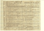Birth Cert. William Alfred Shannon