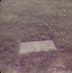 William Alfred Shannon Headstone